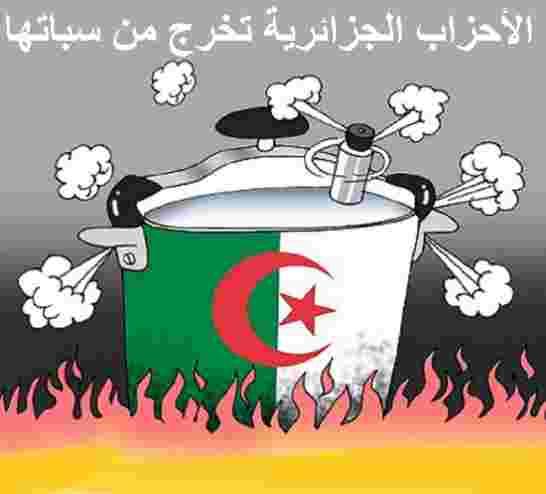 الأحزاب الجزائرية تواصل سياسة السردوك والنعامة